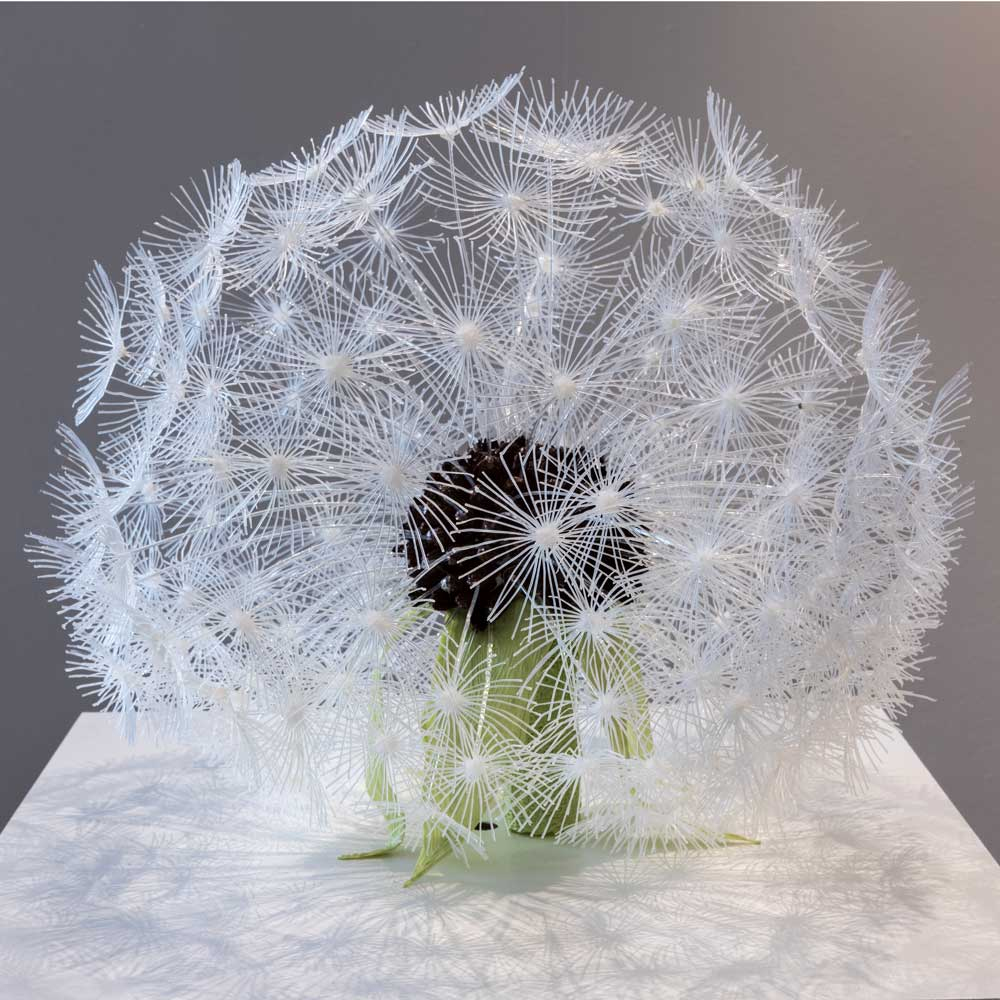 Transforming Nature into 3D Art with Cornelia Kuglmeier